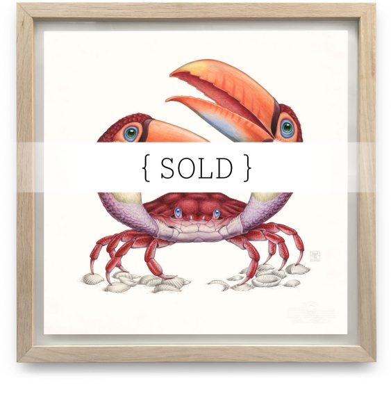 Framed_Original_Tucanogemina_SOLD
