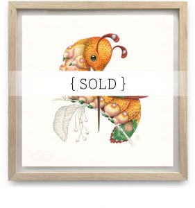 Framed_Original_Peripatus_SOLD